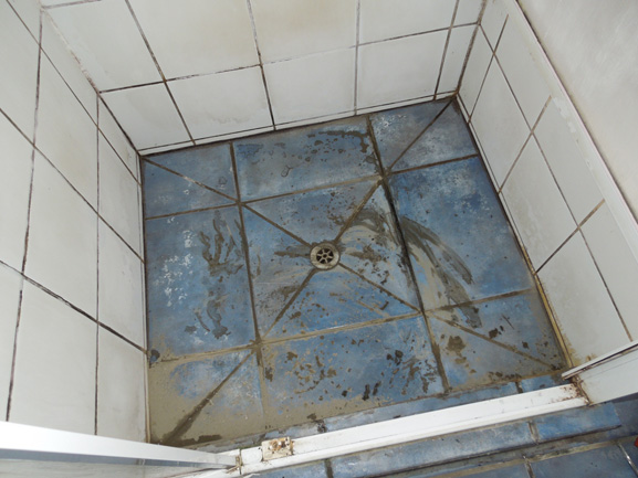 bathroom with rot in Tawa